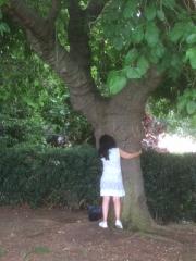 Embrasse l'arbre.JPG