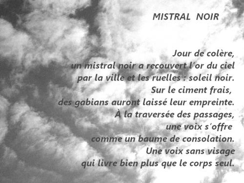 Mistral noir.jpg