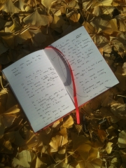 Carnet tapis de feuilles.jpg