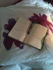 Mon carnet sur oreiller.jpg