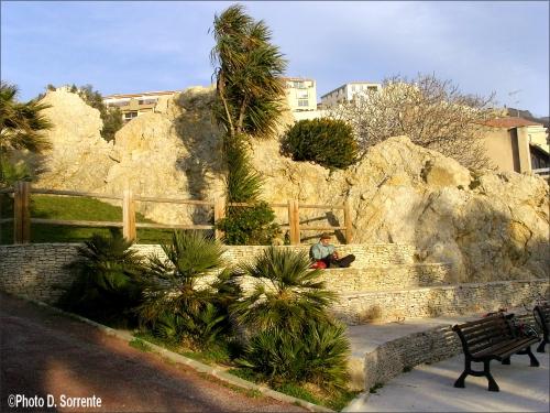 Site_caravane_jardin_2.JPG