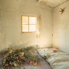 chambre_fleurs_champs_photogr_inc.jpg