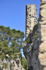 Minerve, La tour, Les pins